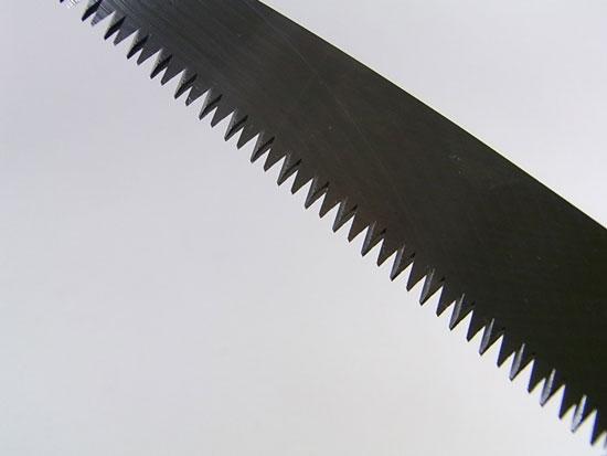 剪定鋸 魚種