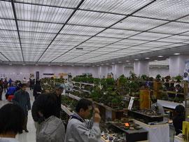 小品盆栽フェア 雅風展