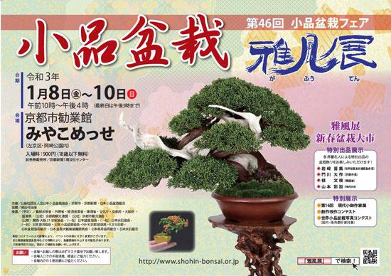 小品盆栽フェア 雅風展 2021 令和3年 京都 みやこめっせ