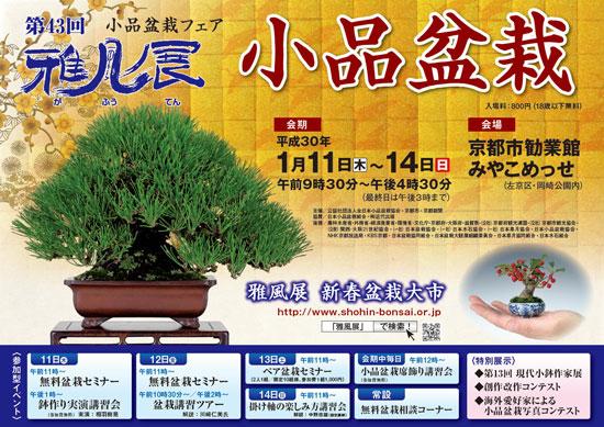 小品盆栽 雅風展 1月 京都市勧業館 みやこめっせ 2018 平成30年