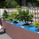 Bonsai matsuri in Omiya bonsai town