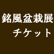 銘風盆栽展 2018年(平成30年)