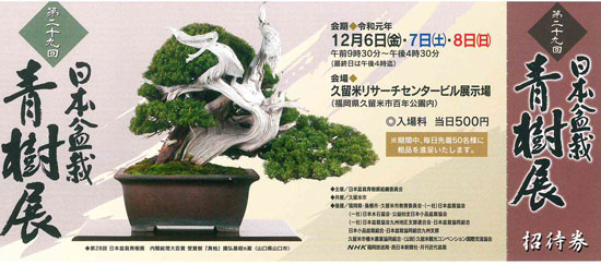 日本盆栽青樹展 福岡県久留米市 2019 令和元年
